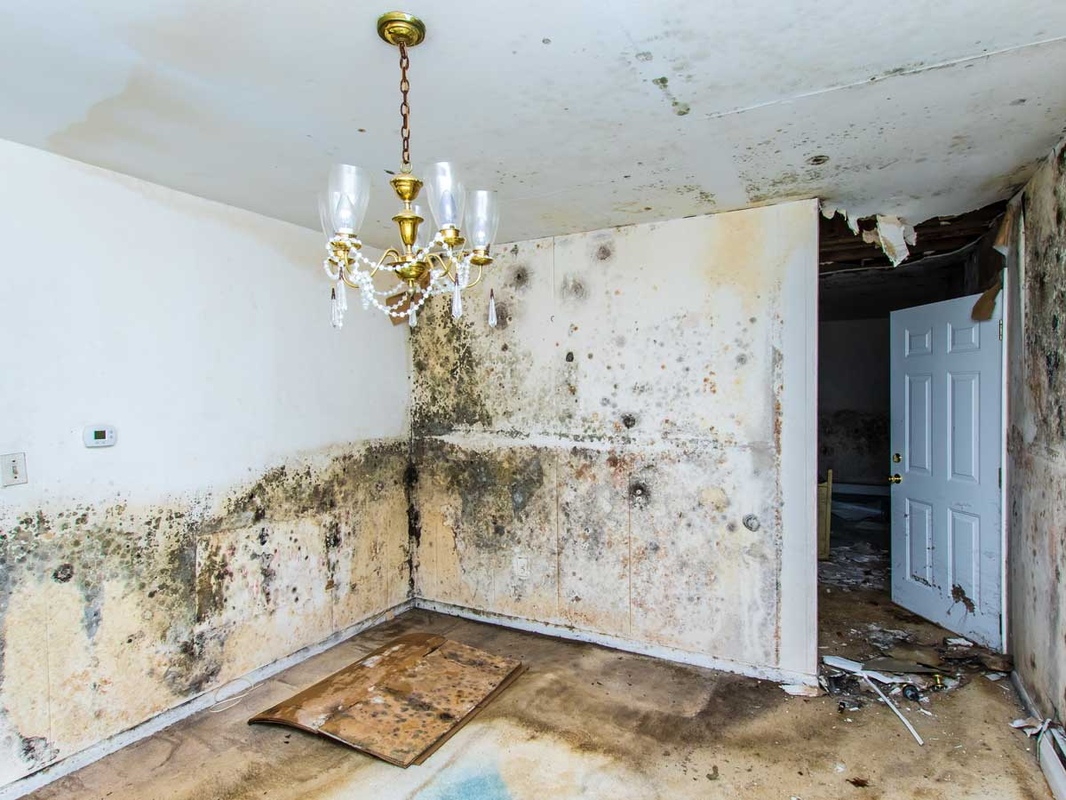We specialize in water restoration and water damage in Bucks County